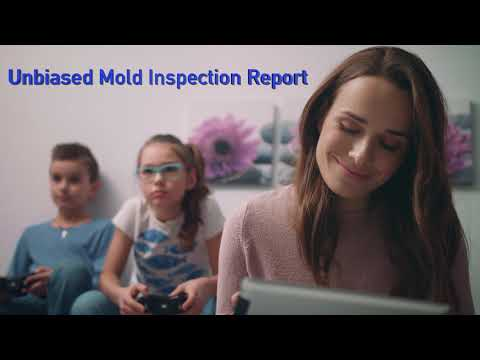 Mold Inspection Naperville IL