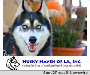 Husky Haven of LA