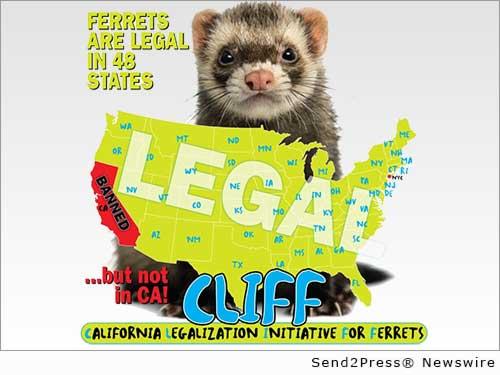 Legalize Ferrets