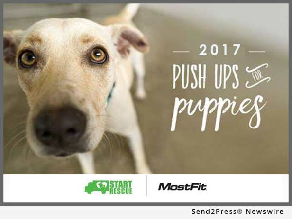 Push Ups for Puppies 2017