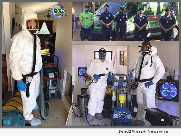 Miami Mold Specialist - Florida