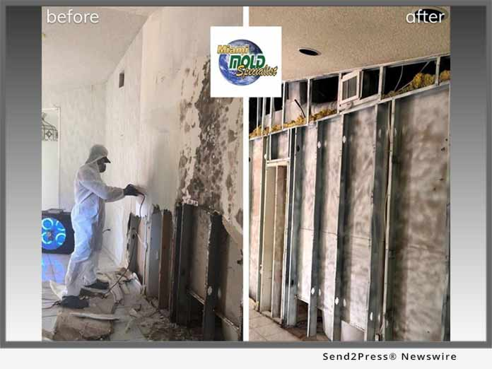 Miami Mold Specialist - Mold Remediation