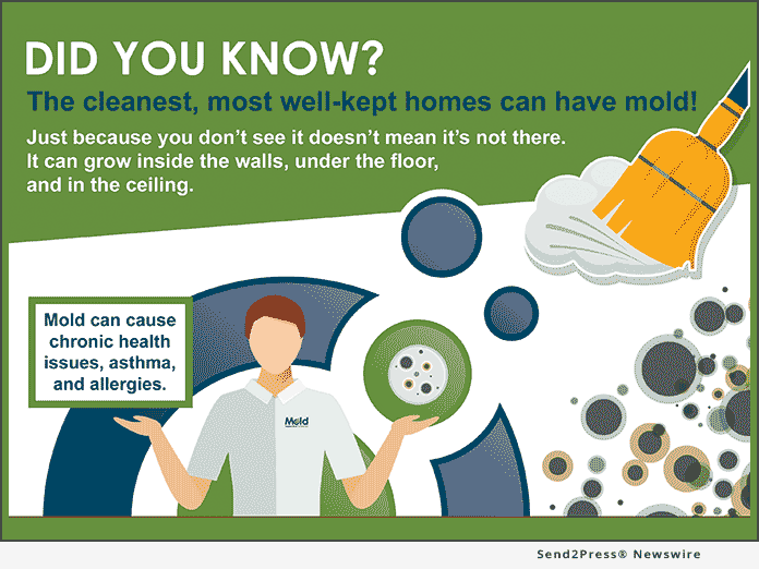 MIS Finding Mold INFOGRAPHIC