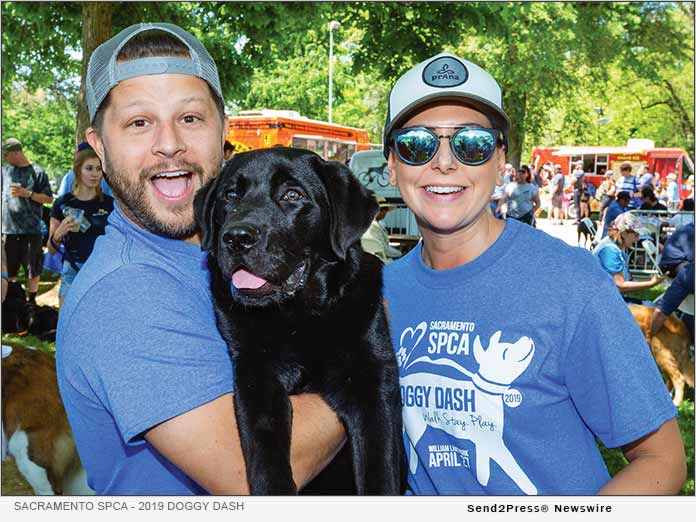 Sacramento SPCA - 2019 Doggy Dash