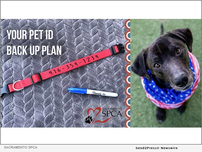 Pet ID Backup Plan - Sacramento SPCA