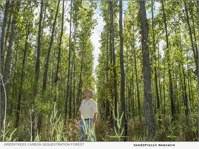 GreenTrees carbon sequestration forest
