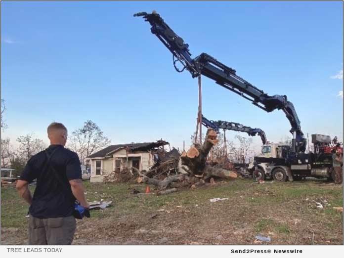 Tree Leads Today - Crane