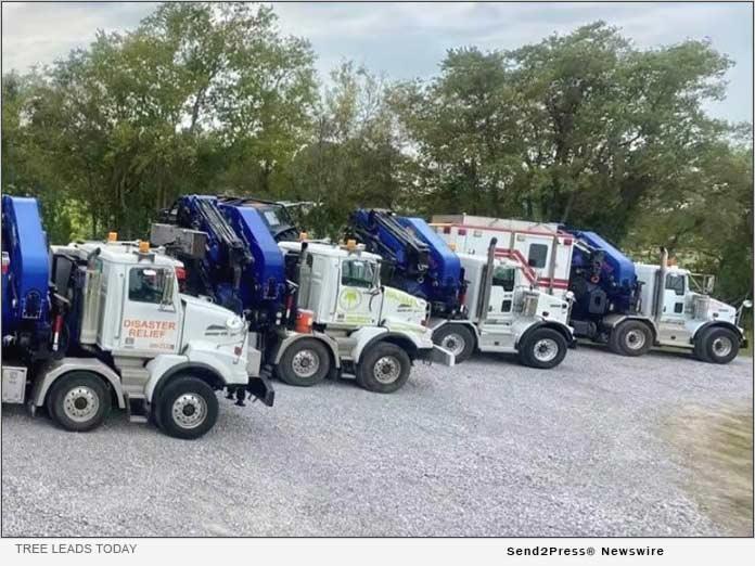 Tree Leads Today - Trucks