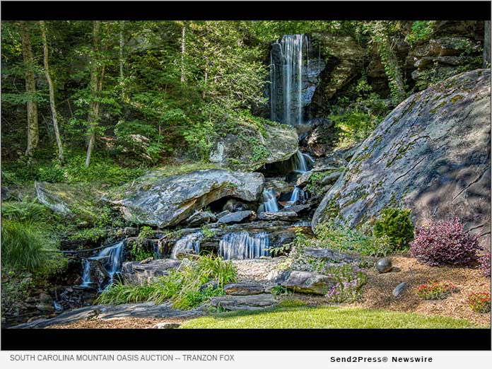 Senior Citizen to Auction Waterfall, Lake and Rustic Cabin