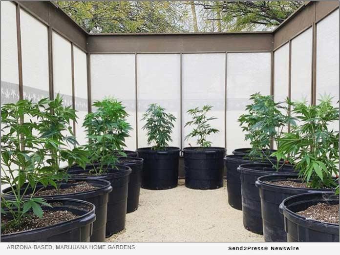 Arizona: Marijuana Home Gardens