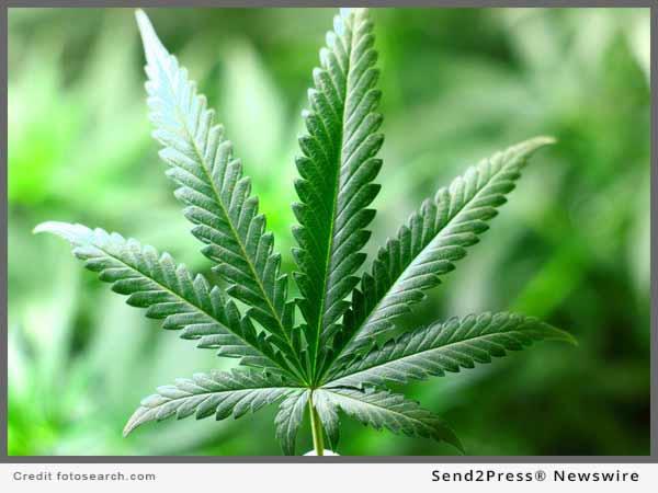 Cannabis News from Send2Press Newswire